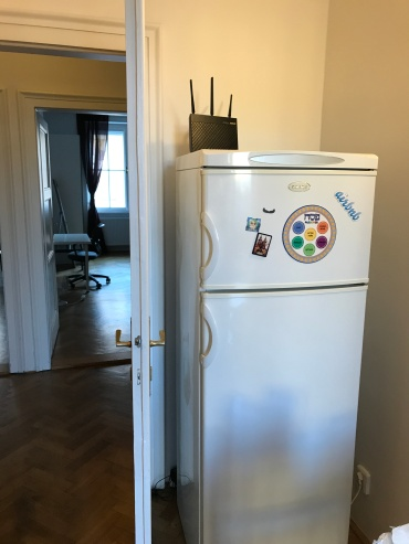 Kitchen fridge